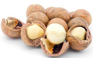 Самый дорогой орех в мире: как называется, топ 10