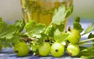 Крыжовник: настойка в домашних условиях на водке, на спирту, на самогоне, лучшие рецепты