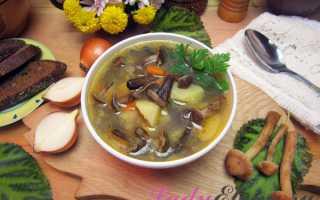 Суп из маринованных опят: пошаговые рецепты приготовления с фото