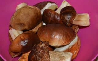 Суп с белыми грибами и плавленым сыром: вкусные рецепты с фото