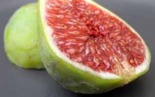 Инжир: польза и вред для организма, калорийность, противопоказания