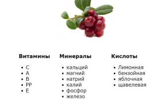 Моченая брусника: рецепты на 3х литровую банку, с сахаром, без сахара, без варки, полезные свойства.