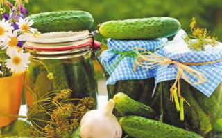 Консервирование овощей, фруктов, ягод, зелени, салатов: рецепты