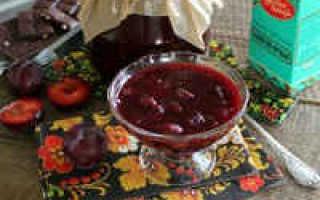Варенье из чернослива на зиму: без косточек, с косточками, рецепт пятиминутка, в шоколаде, с грецким орехом