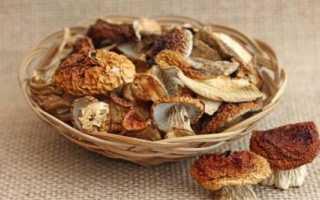 Как сушить белые грибы в домашних условиях: в духовке, сушилке, на нитке