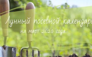 Лунный (посевной) календарь огородника на март 2020 года: посев семян, посадка рассады, обрезка деревьев