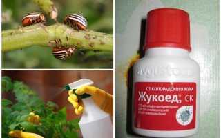 Жукоед от колорадского жука: отзывы, инструкция по применению
