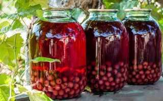 Компот из вишни: 24 рецепта на зиму в 3-литровых банках.