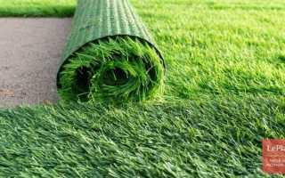 Искусственный газон: виды покрытия, состав, способы укладки + фото