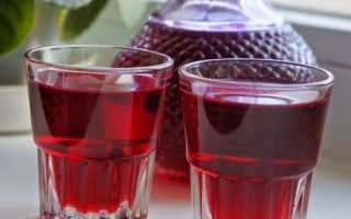 Настойка на клюкве: простой и быстрый рецепт, на сушеной клюкве, на спирту, на водке, в домашних условиях