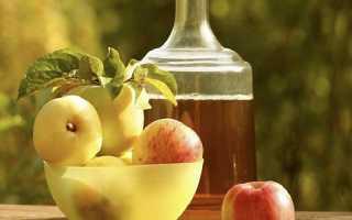 Яблочное вино в домашних условиях: простой рецепт