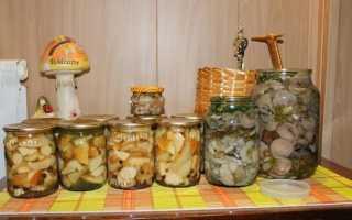 Соленые подосиновики: как засолить на зиму, горячий и холодный способ, рецепты