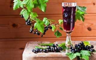 Вино из черной смородины в домашних условиях: польза и вред, рецепты, видео