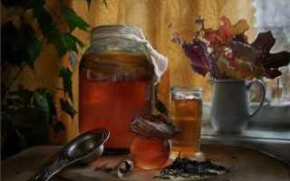 Чайный гриб детям: с какого возраста можно давать, в 2 года, полезные свойства