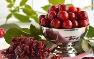 Вяленая вишня с косточкой и без: как сделать в домашних условиях, рецепты с фото