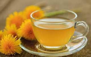 Одуванчик: лечебные свойства и противопоказания листьев и цветов, как выглядит растение, где растет, когда цветет,