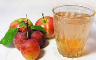 Компот из чернослива на зиму: рецепты в 3 литровой банке, без стерилизации, с яблоками, с