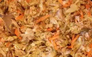 Тушеная капуста с грибами вешенками: рецепты с фото на каждый день