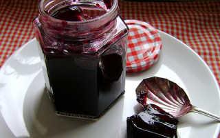 Желе из черной смородины без варки: рецепты на зиму, видео