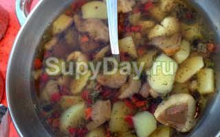 Суп из маслят: рецепты из свежих грибов, как приготовить, сколько варить, крем-суп, молочный, сырный, постный, в мультиварке