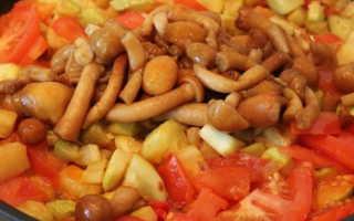 Кабачки с опятами: рецепты приготовления на зиму, жареные, фаршированные, тушеные