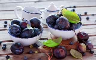 Моченые сливы в домашних условиях: рецепты на зиму с горчицей, в банках, без стерилизации