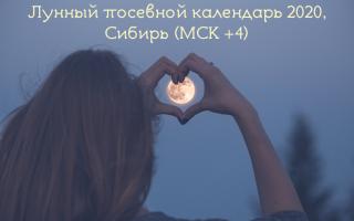 Лунный календарь садовода огородника для Сибири на 2020 год: для Новосибирска, Западной Сибири