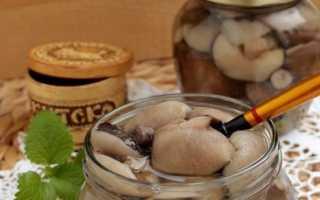 Маслята маринованные: рецепты с луком, чесноком, маслом, горчицей