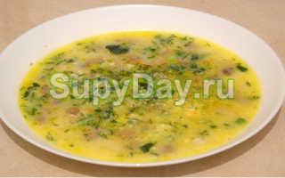 Сырный суп с вешенками: рецепты с картошкой, курицей, плавленым сыром