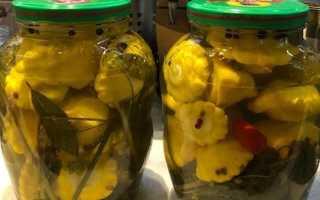 Малосольные патиссоны: рецепты быстрого приготовления в кастрюле, в пакете