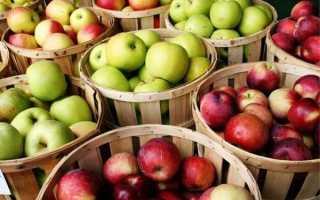 Как сварить варенье из княженики: 5-минутка, с яблоками