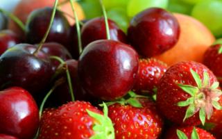Варенье из клубники и вишни на зиму: пошаговые рецепты с фото, с косточками, без косточек,
