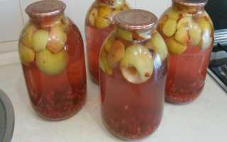 Компот из яблок и черной (красной) смородины: рецепты в кастрюле, на зиму, из свежих, сушеных яблок