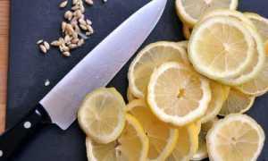 Как вырастить лимон из косточки в домашних условиях: как прорастить семена, как посадить лимонное дерево