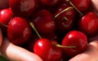 Вишня при сахарном диабете 1, 2 типа: можно ли есть диабетикам свежие, сушеные ягоды