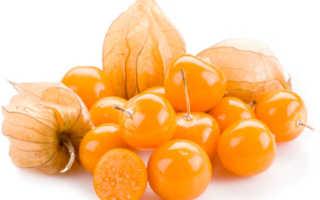 Джем из физалиса: рецепты с лимоном, апельсином, яблоками