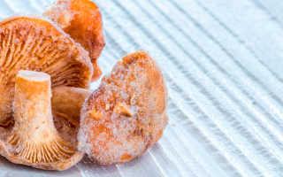 Как приготовить замороженные лисички: вкусные рецепты блюд с фото