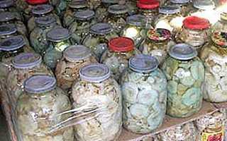 Как хранить соленые грузди после засолки и свежие грибы: в холодильнике, банках