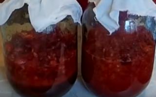Клубничное вино: рецепт приготовления в домашних условиях