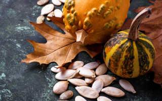 Как сушить тыквенные семечки: польза и вред, калорийность сушеных тыквенных семечек