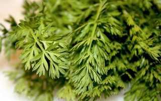 Помидоры с морковной ботвой на зиму: 5 рецептов