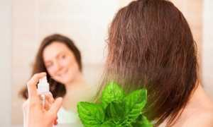 Мята для волос: для сухих, от выпадения, для роста, маски, отвары, полоскания, как использовать, чем полезна