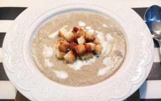 Грибной суп-пюре из шампиньонов: как приготовить по классическому рецепту, с картофелем, с курицей