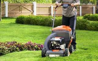 Мотокоса: выбор и разновидности бензиновой ручной газонокосилки