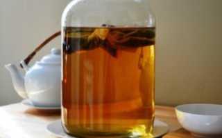 Можно ли пить чайный гриб при сахарном диабете 2 типа (диабетикам): как пить, отзывы