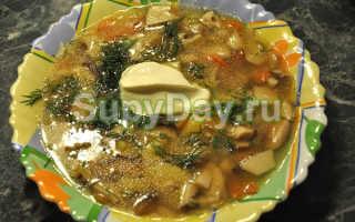 Суп из белых грибов с картошкой: сухих, свежих и замороженных