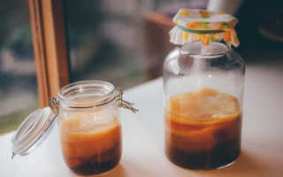 Как употреблять чайный гриб правильно в лечебных целях: как и сколько пить в день, в
