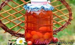 14 рецептов компота из алычи на зиму