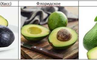 Как выбрать спелое авокадо в магазине: правила выбора, фото и видео