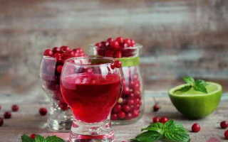 Наливка из брусники: рецепты на водке, на спирту